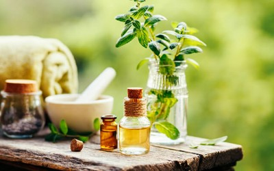 WHAT IS ESSENTIAL OIL? THE EFFECTS OF ESSENTIAL OILS IN LIFE